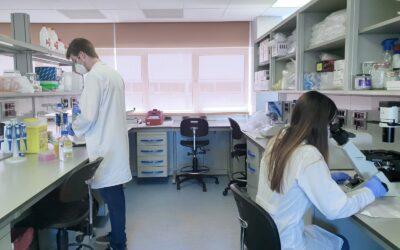 Madrid acoge la primera bioincubadora especializada en terapia celular, genética e inmunología de Europa